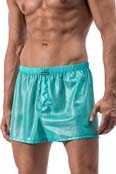 MANstore Wetlook Shorts M560 Vetro